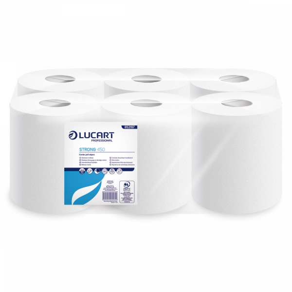 Lucart Handtuchpapierrolle M, 6 Rollen, 20 x 30,5 cm, 2-lg., 450 Blatt - 852197